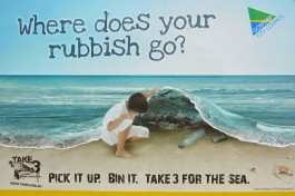 Beach Clean Initiative, Central Coast, NSW, Australia