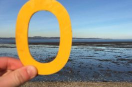 Olivia's beach finds:Dalmeny Beach,Scotland