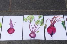 The Art Class: Springmix homeworks