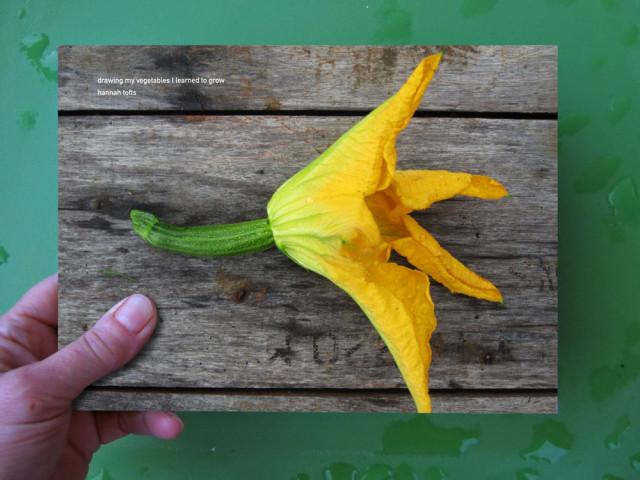 vegetablesbook